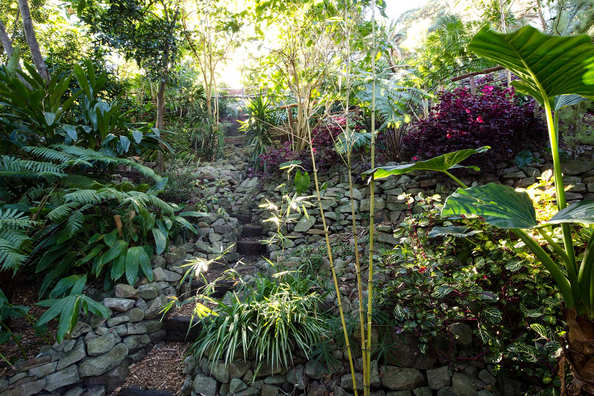 Wendy's Secret Garden Steep Pathways
