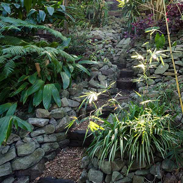 Small Garden Secrets: Wendy's Secret Garden Lavender Bay Sydney