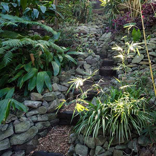 Wendy's Secret Garden Steep Pathways