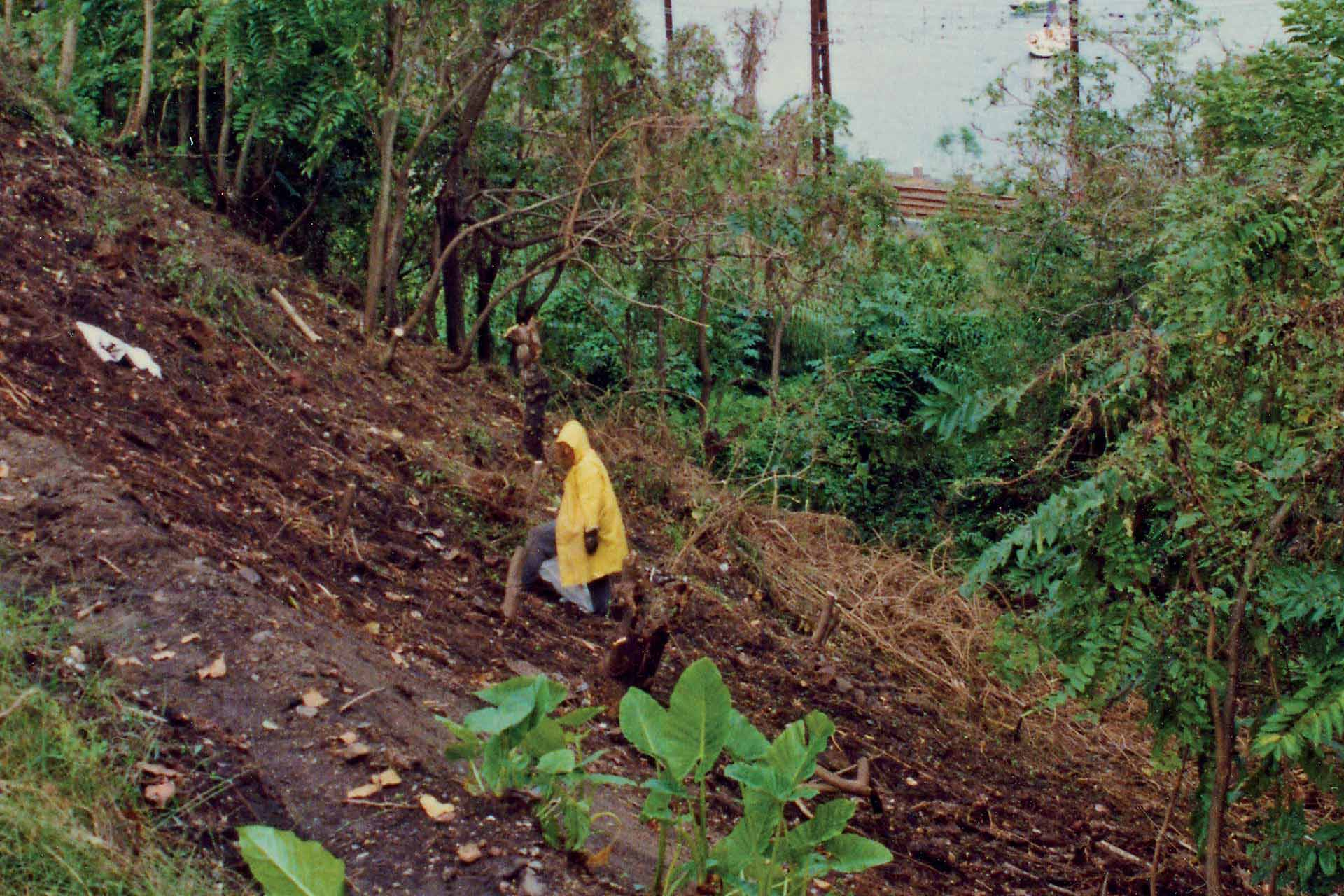 Wendy's Secret Garden Wendy Clearing Mid 90s